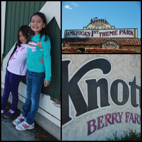 knotts 1 Collage