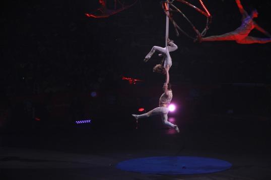 circus 8